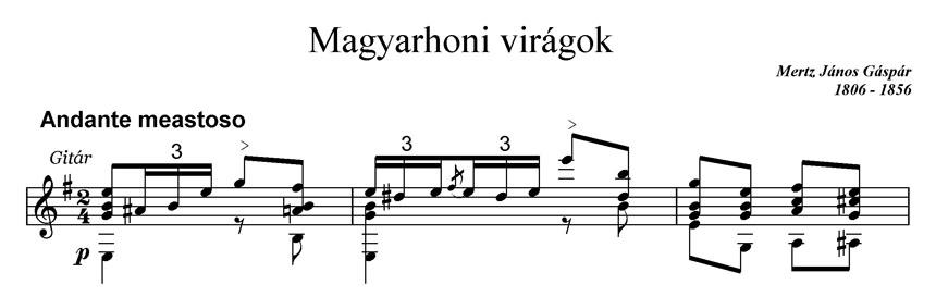 22_Magyarhoni